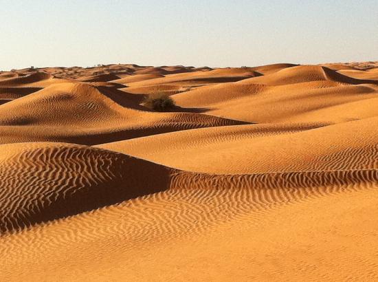 Sahara Desert: View, Ksar Ghilane