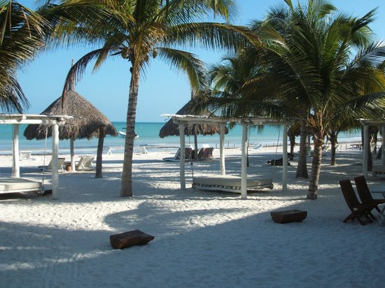 Holbox Hotel Casa las Tortugas - Petit Beach Hotel & Spa: Love this wiew...