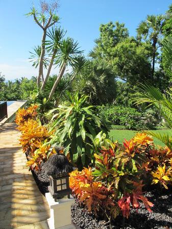 Villa Flow: Garden