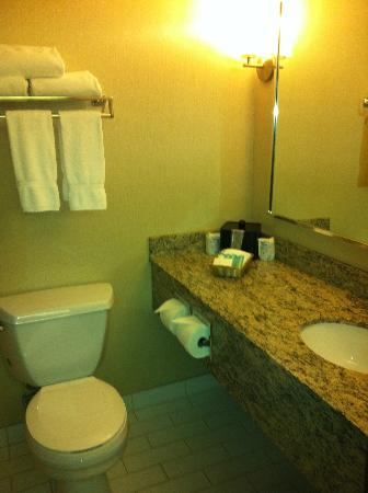 Valhalla Inn: Renovated Bathroom