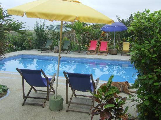 Hostel Viejamar Surf : Pool of Viejamar