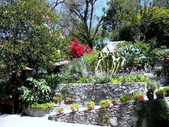 La Casa de Liza: Gardens