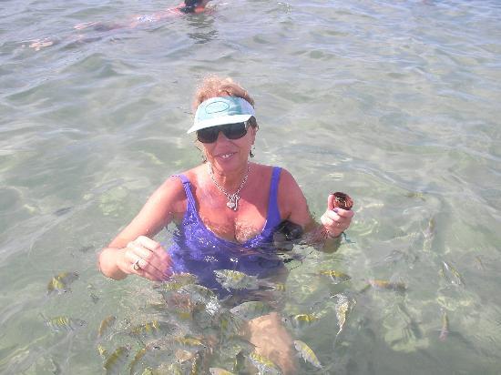 Quarta Praia Beach: aqui dandole de comer a los peces, ellos te acompañan donde vayas