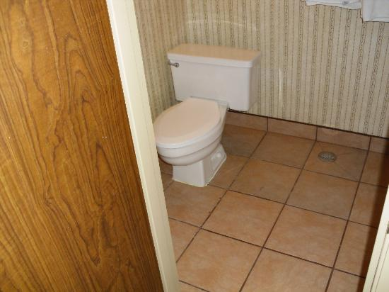 Wyndham EL Paso Airport Hotel and Water Park: Tub and toilet have their own little room.