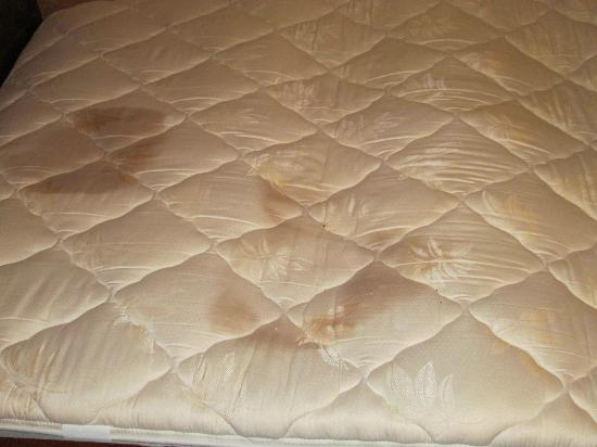 Stains On Top Of Loft Mattress Picture Of Chula Vista