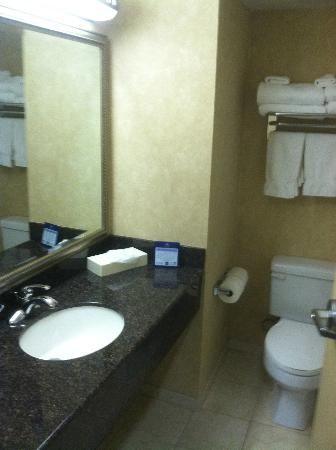 BEST WESTERN PLUS Media Center Inn & Suites: Bathroom Room 313