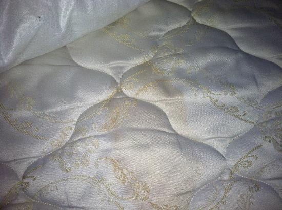 Staybridge Suites Savannah Airport : Mattress with urine stain.