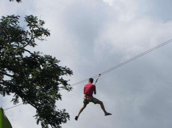 Jungle Top Zipline Adventure : flying through the trees