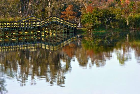 Lakes Regional Park: Reflection Bridge