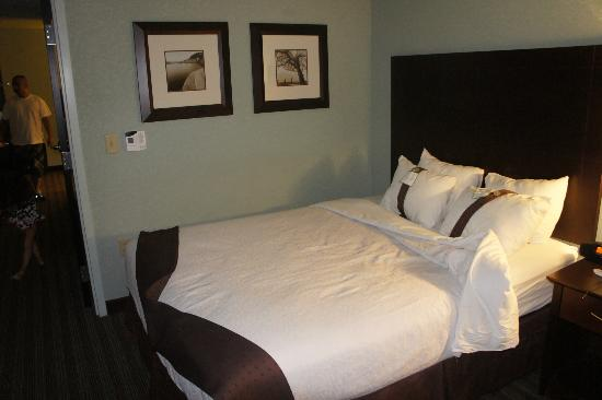 Holiday Inn Hotel & Suites, Williamsburg-Historic Gateway: clean room, comfy beds