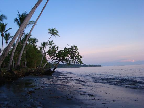 Hooked On Panama Fishing Lodge: beach in front of lodge