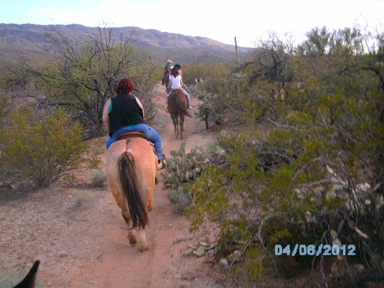 Tanque Verde Ranch: On the trail.
