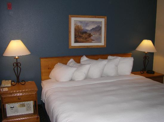 AmericInn Lodge & Suites Eagle: Clean room