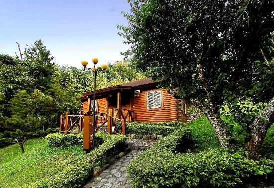 Sun Moon Lake Youth Activity Center : Triple room  in wooden cabin