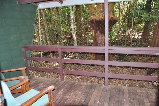 Chambers Wildlife Rainforest Lodges: Back verandah