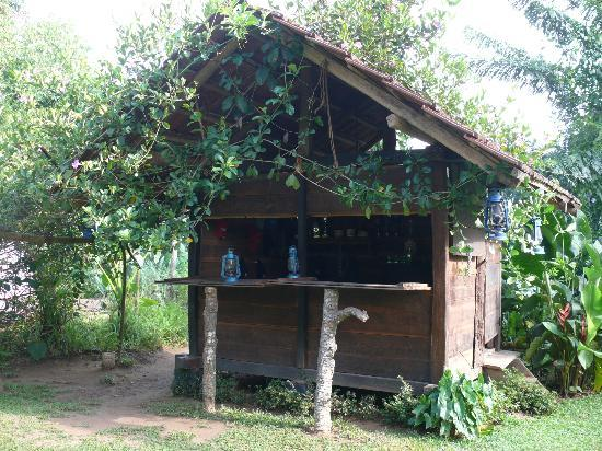 The Kandyan Manor: The Bar