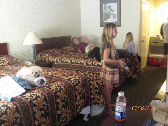 Rodeway Inn & Suites: nice room