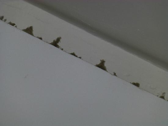Hotel Neptuno: Agrandissement sur la crasse plafond