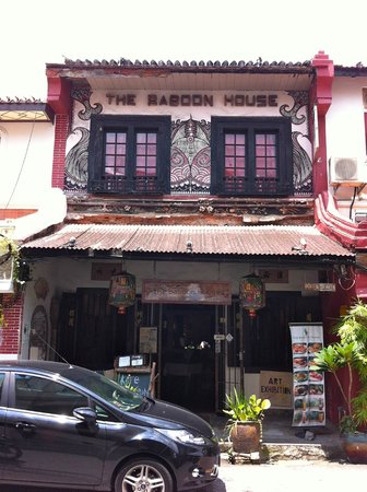 The Baboon House