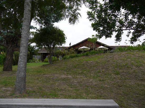 Piesang Valley Lodge: Hotel from the pool area