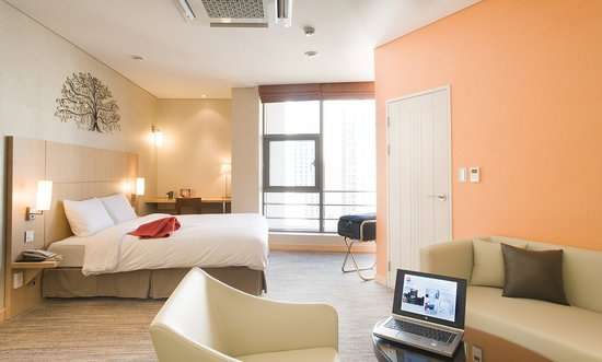ibis Ambassador Busan City Centre: Junior Suite 1