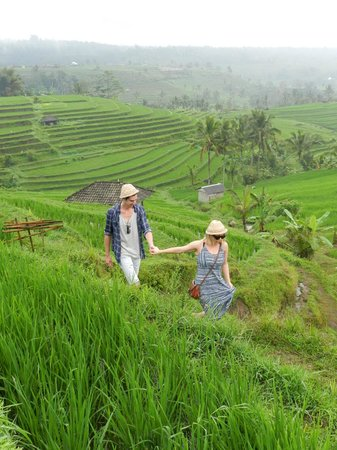 Dewa Bali Tour - Day Tours