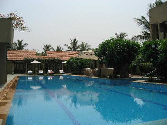 Shreyas Yoga Retreat: The pool