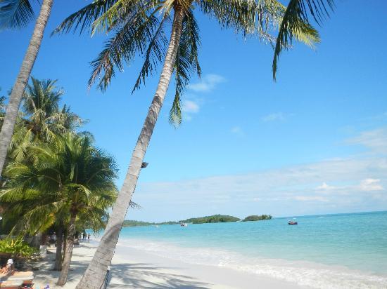 Chaweng Regent Beach Resort: Udsigt fra pool/strand