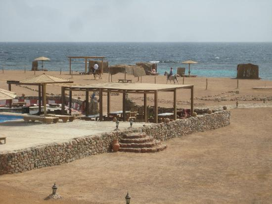 Daniela Village Dahab: Poolbar and beach
