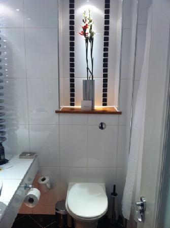 Waterhead Hotel: bathroom