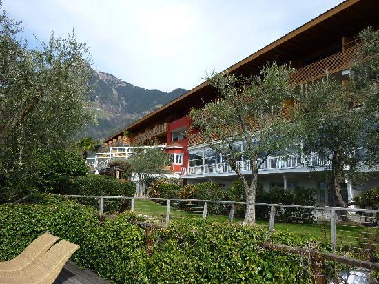 Erika: Garten mit Blick auf Olivenbäume und Hotel