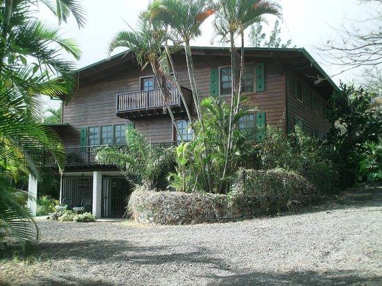 Villa Escazu: villa