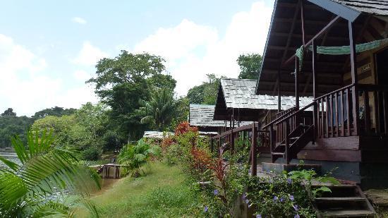 Danpaati River Lodge: De huisjes aan de rivier