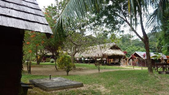 Danpaati River Lodge: Het restaurant en de lounge