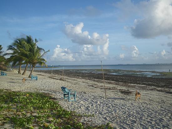 Mikadi Beach at Low Tide