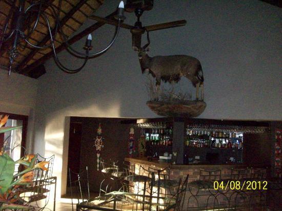 Falaza Game Park & Spa: bar