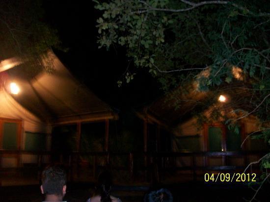 Falaza Game Park & Spa: night vision