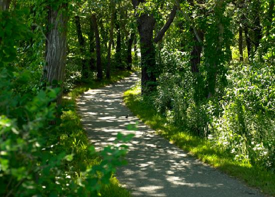 Take a stroll in one of Massachusetts' many state parks