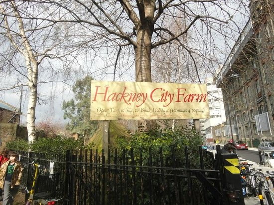 ‪Hackney City Farm‬