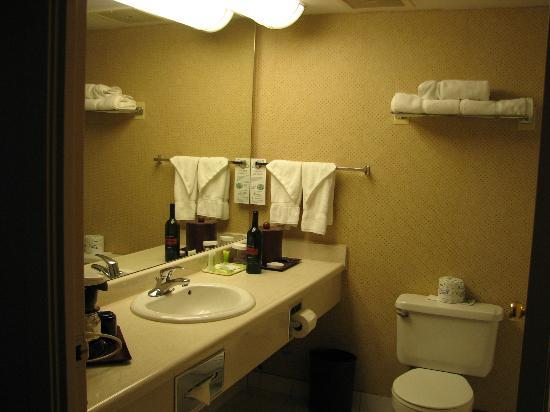 Sandman Signature Mississauga Hotel: Bathroom