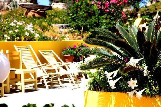 Aris Hotel: flowers