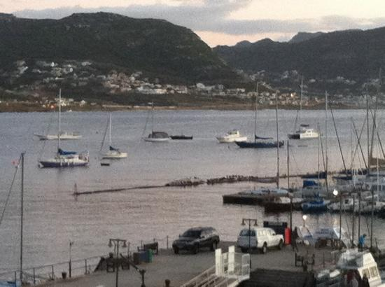 Simon's Town Quayside Hotel and Conference Centre: view from room