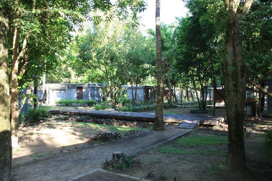Costa Lanta: bare garden