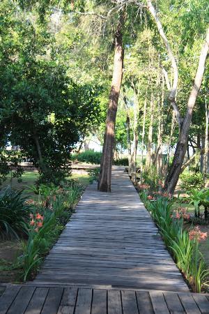 Costa Lanta: garden