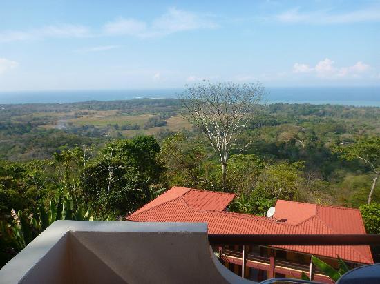Vista Ballena Hotel: Vista de la habitacion