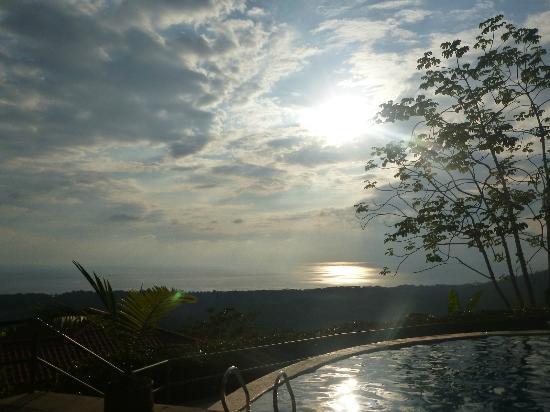 Hotel Whales and Dolphins: Vista de la piscina