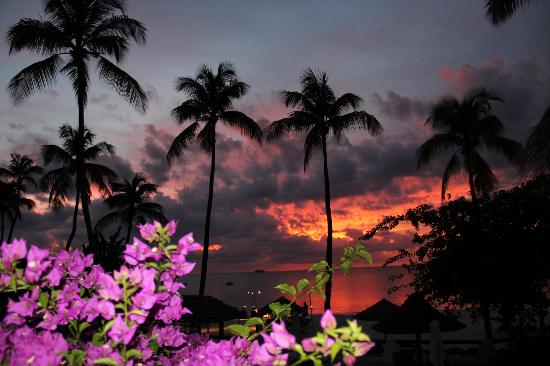 Sandals Grande Antigua Resort & Spa : Effectful sunset