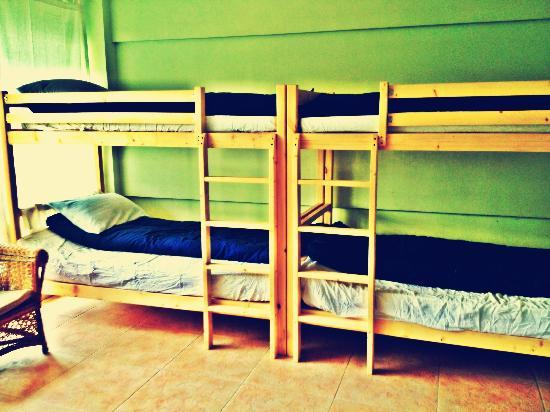 Cici's House : 6 dorm