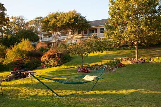 Lookout Point Lakeside Inn: Relax in the Hammock