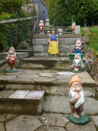Edencoille Bed & Breakfast: snow white and the 7 dwarfs